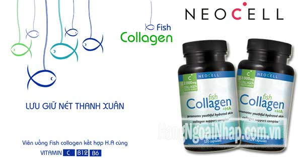 vien-uong-neocell-fish-collagen-2B-ha-2000mg-120-vien-cua-my_